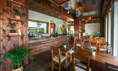 Evergreen Organics Cafe