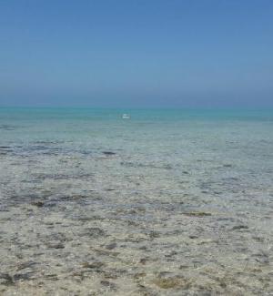 Al Ghariya Beach (Madinat Ash Shamal)