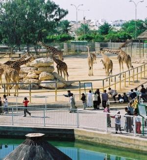 Doha Zoo (Doha)